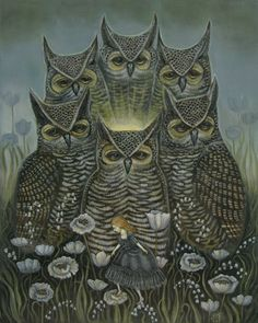 Light of the Owls