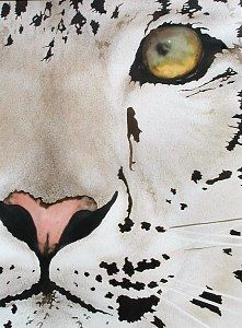 Ruth Tatter: Snow Leopard   WATERCOLOR