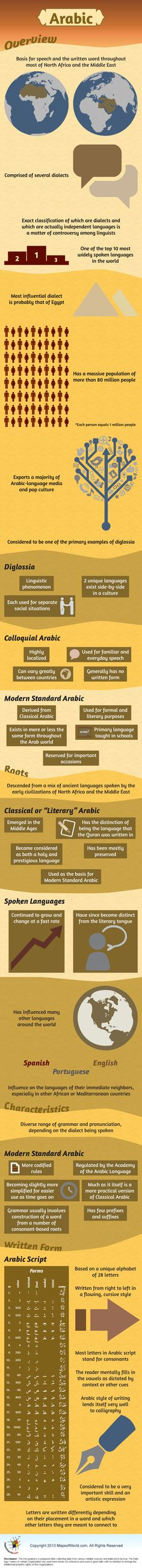 Cv Samples Arabic English Cv Template Word In Arabic Cv