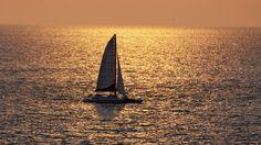 Clearwater Beach Sailing