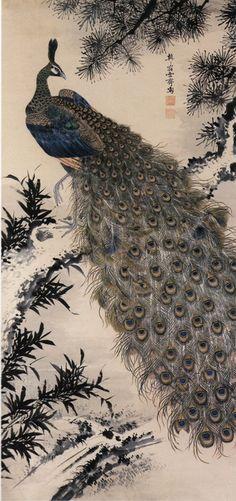 Painting of a peacock (Edo period)by Masuyama Sessai (1754 - 1819). Silk painting.  Nagoya City Museum .