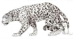 Big Feline by Meedup.deviantart.com on @DeviantArt