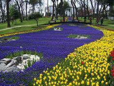 Kesinlikle gidilsesi görülesi bir yer...  Acele edin yalnız sadece Nisan ayında. İstanbul / Emirgan - Lale Festivali