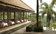 Plantation Restaurant at Alila Ubud Hotel.  From our feature - Found: Contemporary Balinese Style Hidden In The Forest Outside Of Ubud.  Read it here: http://www.thechictravelclub.com/contemporary-balinese-ubud/