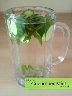 """cucumber mint water + 39 other """"spa water"""" ideas! I Love fruit water. Fruit Water Recipes, Infused Water Recipes, Fruit Infused Water, Infused Waters, Mint Water, Spa Water, Calendula Benefits, Matcha Benefits, Yummy Drinks"""