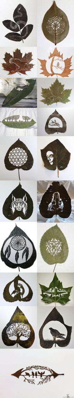 Lorenzo Duran @Vicki Smallwood Robinson  Aren't these cool? I saw them and thought you would enjoy!