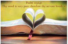 Psalm 119:140