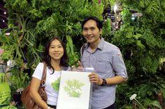with the botanical illustrator กับคุณเต๋า - สุนิตสรณ์ พิมพะสาลี ศิลปินผู้วาดภาพเฟินเขากวางตั้ง Thailand, Gardening, Electronics, Lawn And Garden, Horticulture, Square Foot Gardening, Garden Care