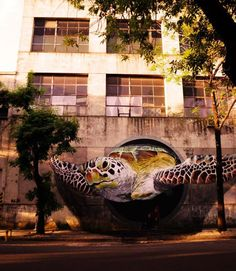 Cool street art from Buenos Aires, Argentina. Painted by Martin Ron Murales and Federico Ron.