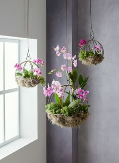 Orchid Planter Project Will Be a Conversation Starter This project can be done in an afternoon and makes it easy to show off your favorite orchid plants.This project can be done in an afternoon and makes it easy to show off your favorite orchid plants. Indoor Orchids, Orchids Garden, Indoor Plants, Indoor Gardening, Organic Gardening, How To Plant Orchids, Indoor Orchid Care, Indoor Mini Garden, Indoor Flowers