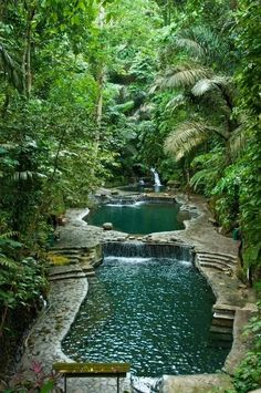 46 pool landscaping ideas tropical small backyards 7 ~ vidur net is part of Garden pond design - 46 pool landscaping ideas tropical small backyards 7 Related Garden Pond Design, Landscape Design, Garden Ponds, Landscape Plans, Fence Design, Natural Swimming Ponds, Swimming Pools, Dream Pools, Cool Pools