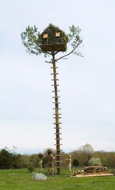 Treehouse, Cabane - Ecosystem machine : Abris / Hotel à insectes Mangeoire Récupérateur eau de pluie Machine