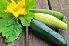 V kuchyni vždy otevřeno ...: Cuketa, její využití v kuchyni a recepty Food And Drink, Vegetables, Recipes, Art, Syrup, Art Background, Recipies, Kunst, Vegetable Recipes