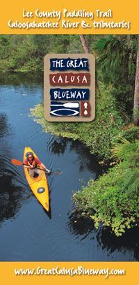 The Calusa Blue Way - kayaking and wildlife viewing dolphins and manatees. Fort Myers, Florida