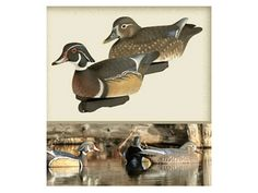 Final Approach Gunners HD Wood Duck, 2 Packs of 6