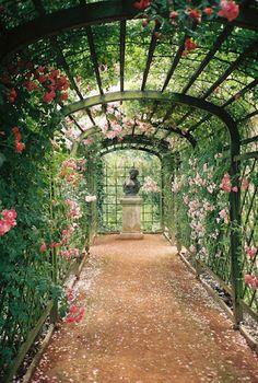 The Secret Garden, Hidden Garden, Secret Gardens, Nature Aesthetic, Dream Garden, Big Garden, Pathways, Garden Landscaping, Landscaping Design