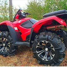 Home: At my dads house he backs onto a farm so we have ATVs and I love riding those around.