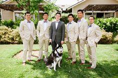 Casual attire groomsmen, Beige suits groomsmen, and incorporating dogs in weddings