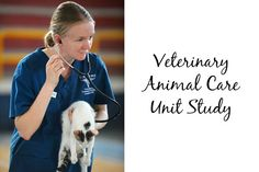 Veterinary Animal Care Unit Study – Eclectic Homeschooling
