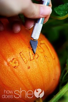 """carving a word/design in a growing pumpkin so the """"scar"""" grows as the pumpkin does."""