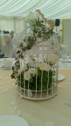 Bird cage flowers