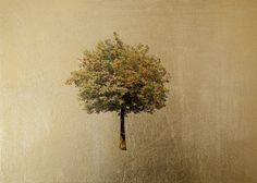 Sorbus by Robert Pereira Hind