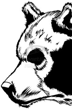 Bear in black & white