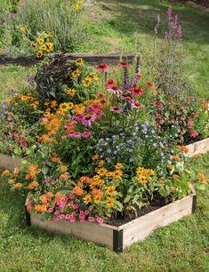 Front Flower Beds, Raised Flower Beds, Cedar Raised Garden Beds, Cedar Garden, Raised Gardens, Flower Bed Designs, Backyard Garden Design, Front Yard Garden Design, Raised Bed Garden Design
