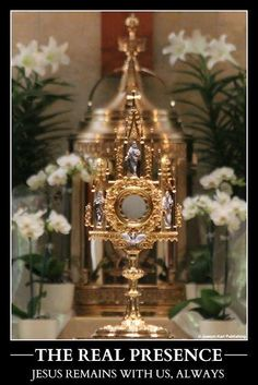 Jesus is with us ALWAYS in the Blessed Sacrament ❤️