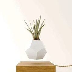Embrace #Lyfe  - LIVE on Kickstarter - Reflecting light in a myriad of ways & absorbing light 360 degrees around. -  LIVE on KICKSTARTER. Link in profile.  #plants #plantpot #light #art #design #swedishdesign #nordicdesign #techanddesign #cool stuff #architecture #graphicdesign #productdesign #levitatinglight #flyte #
