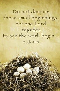 "Zechariah 4:10; NIV ""Who dares despise the day of small things, since the seven eyes of the LORD that range throughout the earth will rejoice when they see the chosen capstone in the hand of Zerubbabel?"""