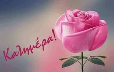 Beautiful Love, Beautiful Pictures, Greek Language, Good Morning Happy, Romantic, Messages, Rose, Waves, Letters
