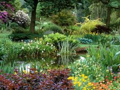 Backyard Pond Is a Tranquil Garden Feature. A pond can be a beautiful, calming feature in a backyard if the space is large enough. It will help attract wildlife and a variety of surrounding plants can be used to offer color and texture.