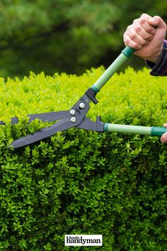 Monthly Home Maintenance Tasks You Should Take Care Of