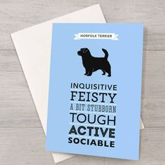 Norfolk Terrier Dog Breed Traits Card