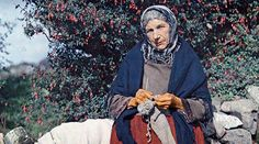 A woman knits wool clothing under a fuchsia tree. Image: Clifton R. Adams / National Geographic.