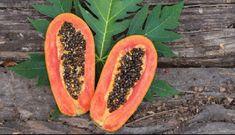 ΠΑΡΑΣΙΤΑ : Οι τροφές και τα βότανα που σκοτώνουν τα εντερικά ...