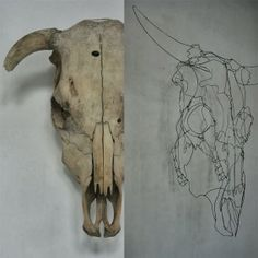 objets fils de fer sculptures et objets: anatomie