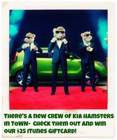 There's a new CREW of KIA Hamsters in TOWN- check them out and win our $25 iTunes Giftcard! http://www.thestatenislandfamily.com/theres-a-new-crew-of-kia-hamsters-in-town-check-them-out-and-win-our-25-itunes-giftcard/ … #KiaSocialClub #Hamsters