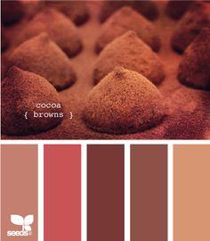 Cocoa browns color palette