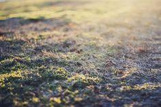 Imagen de bandana, denim, and spring
