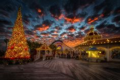 Merry Christmas From Paradise Pier by William McIntosh