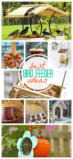 DIY bird feeders that are easy to craft at home using different creative materials. Hang them on a tree or wall and enjoy watching birds around!