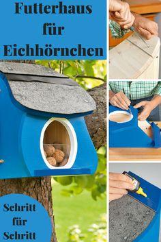 Dieses Futterhaus zieht die possierlichen Nager magisch an! Unsere Bauanleitung Futterhaus Eichhörnchen zeigt Schritt für Schritt, wie du es selbst bauen kannst.