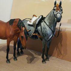 Sorry girls no photos until tomorrow now.  #horse #modelhorse #modelhorses…