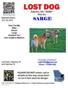 Lost Dog - Shar Pei - Zebulon, GA, United States