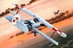 Nieuport 27, during the Soviet Polish War