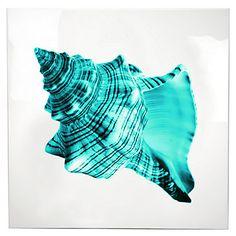 Aqua Shell Painting