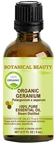 The Geranium plants originated from South Africa as well as Reunion Madagascar Egypt and Morocco and were introduced to European countries such as Italy Spain and France in the 17th century. Organi...