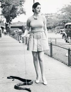 snake walking